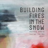 book cover Building Fires in the Snow