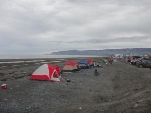 City of Homer Alaska Official Website